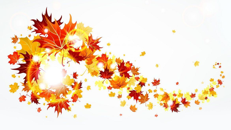 autumn-leaves-20413-1920x1200